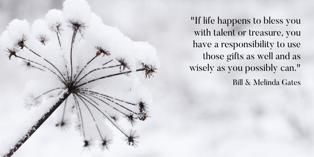 Snow plant with quote.